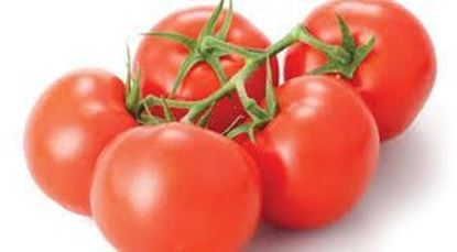 Picture of Tomato (per kg)