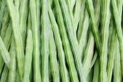 Picture of Drumstick (India)/ per kg